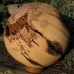 Kastanie, Ramsen, Durchmesser 50 cm