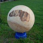 Weisstanne, Durchmesser 90 cm