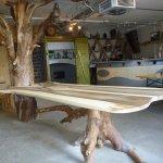 Baum aus Hemishofen mit Tischplatte aus Nussbaum
